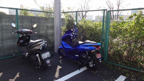 Ssdsc00176